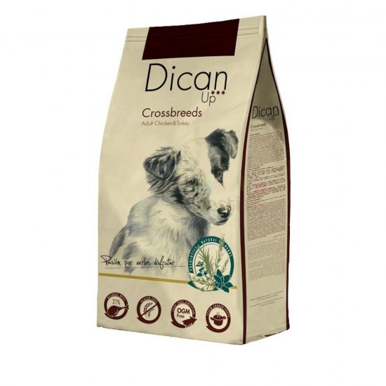 DICAN UP CROSSS BREEDS 14KG